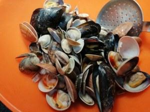 Paccheri ai frutti di mare